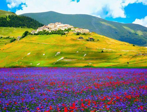 Dal 24 al 27 giugno: VIAGGIO IN UMBRIA e la fioritura delle lenticchie a Castelluccio da Norcia